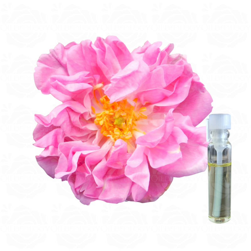 Pure rose oil