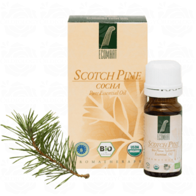 Organic Pure Scotch Pine oil 10ml (Pinus Sivestris) Ecomaat